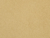 Masland-Carpet-Americana-Scallop