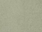 Masland-Carpet-Americana-Seaweed