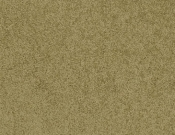 Masland-Carpet-Americana-Teton