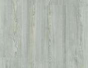 Clean Pine