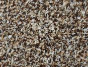 Shaw- Carpet- Philadelphia- Arbor- View- (T)- Brown sugar