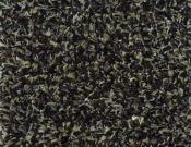 Shaw- Carpet- Philadelphia- Arbor- View- (T)- Walnut shell