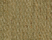 Fibreworks- Carpet- Botenical- Blends- Autumn- Twist- 616 Natural