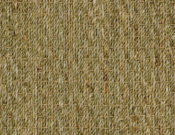 Fibreworks- Carpet- Botenical- Blends- Autumn- Twist- 635 natural