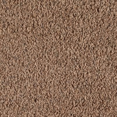Mohawk Aladdin Residential Carpet Durable Carpets In Dalton