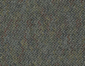 Shaw-Philadelphia-Carpet-Bejeweled-Flowery