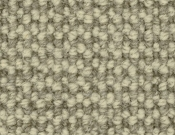 Godfrey-Hirst-Carpet-Silverpointe