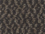Shaw-Carpet-Philadelphia-Bird's-Eye-Brow Rabbit