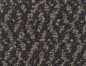 Shaw-Carpet-Philadelphia-Bird's-Eye-Chickadee
