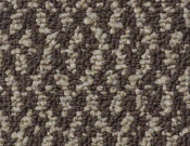 Shaw-Carpet-Philadelphia-Bird's-Eye-Honeybird
