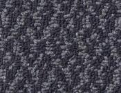Shaw-Carpet-Philadelphia-Bird's-Eye-Nightshade