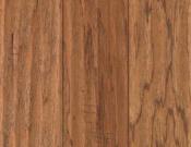 Hickory Chestnut