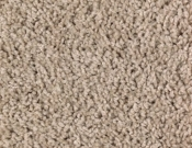Mohawk-Carpet-Horizon- Bright- Opportunity-Brushed Suede