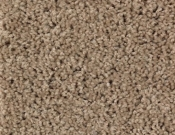 Mohawk-Carpet-Horizon- Bright- Opportunity-Gingerbread