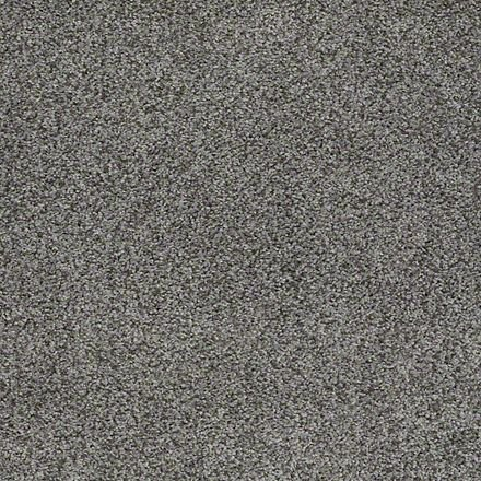 Stainmaster Carpet Warranty Images Trusoft