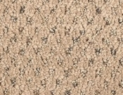 Mohawk-Carpet-Calming-Nature-Sandstone