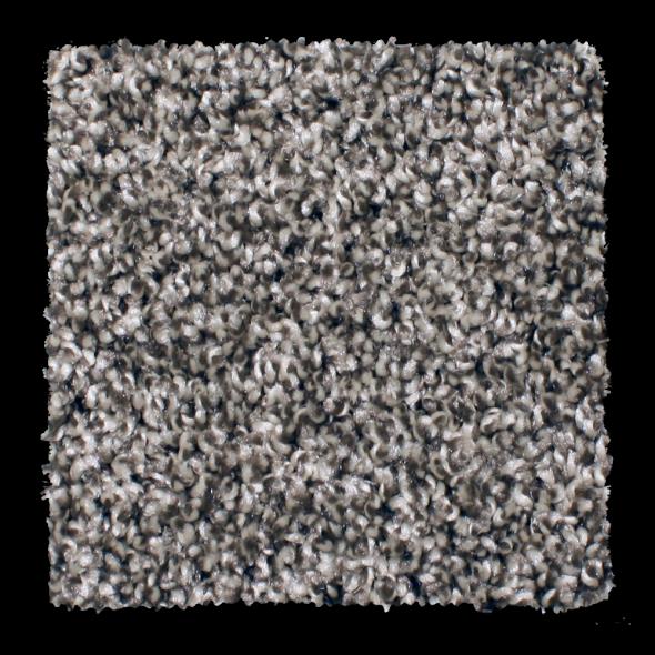 Buy Cape Hatteras By Phenix Shag Texture