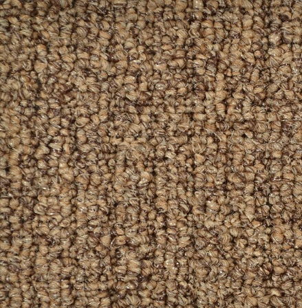 Casual Boncle By Shaw Indoor Outdoor Carpet