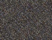 Shaw-Philadelphia-Carpet-Change-In-Attitude-Adrenaline Rush