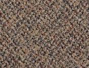 Shaw-Philadelphia-Carpet-Change-In-Attitude-Get A Grip