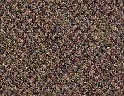 Shaw-Philadelphia-Carpet-Change-In-Attitude-Play It Cool