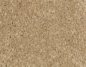 Mohawk-Carpet-Horizon-Coastal-Path-I-Carved Wood