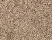 Mohawk-Carpet-Horizon-Coastal-Path-I-Dried Sage