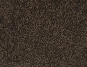 Mohawk-Carpet-Horizon-Coastal-Path-II-Black Walnut