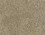 Mohawk-Carpet-Horizon-Coastal-Path-II-Botanical