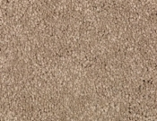 Mohawk-Carpet-Horizon-Coastal-Path-II-Dried Sage