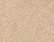Mohawk-Carpet-Horizon-Coastal-Path-II-Parchment