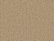 Shaw-Carpet-Philadelphia-Color-Accents-Autumn Gold