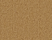 Shaw-Carpet-Philadelphia-Color-Accents-Brasserie