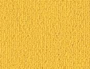 Shaw-Carpet-Philadelphia-Color-Accents-Citrus