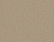 Shaw-Carpet-Philadelphia-Color-Accents-Cornsilk