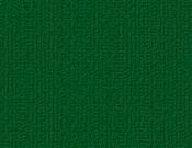 Shaw-Carpet-Philadelphia-Color-Accents-Dark Green