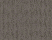 Shaw-Carpet-Philadelphia-Color-Accents-Dolphin