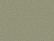 Shaw-Carpet-Philadelphia-Color-Accents-Fescue