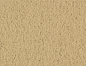 Shaw-Carpet-Philadelphia-Color-Accents-Flax