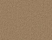 Shaw-Carpet-Philadelphia-Color-Accents-Gilded