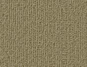 Shaw-Carpet-Philadelphia-Color-Accents-Glass