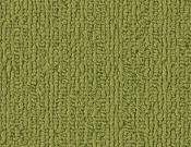 Shaw-Carpet-Philadelphia-Color-Accents-Green
