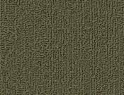Shaw-Carpet-Philadelphia-Color-Accents-Ivy
