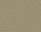 Shaw-Carpet-Philadelphia-Color-Accents-Lichen