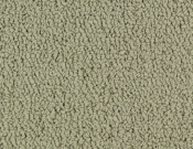 Shaw-Carpet-Philadelphia-Color-Accents-Light Taupe
