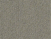 Shaw-Carpet-Philadelphia-Color-Accents-Mineralite