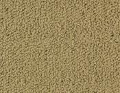 Shaw-Carpet-Philadelphia-Color-Accents-Pecan