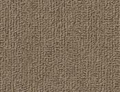Shaw-Carpet-Philadelphia-Color-Accents-Portabella