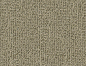 Shaw-Carpet-Philadelphia-Color-Accents-Sage