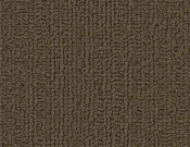 Shaw-Carpet-Philadelphia-Color-Accents-Timber